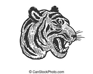 Tiger head tattoo sketch engraving vector illustration. T-shirt apparel print design. Scratch board imitation. Black and white hand drawn image.