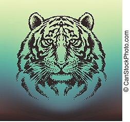 Tiger head vector drawing