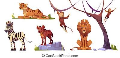 tiger, hiena, dziki, lew, rysunek, małpy, zwierzęta