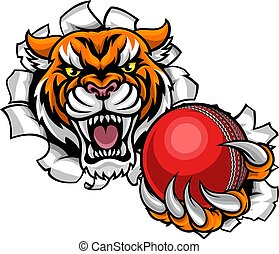 Tiger Holding Cricket Ball Breaking Background