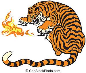 tiger, ild, spille