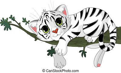 Tiger is on a branch - Cute white Tiger is on a branch