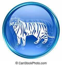 tiger, kék, állatöv, ikon