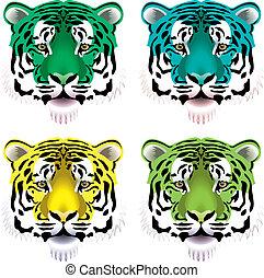 tiger, köpfe