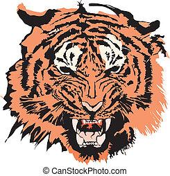 tiger, kleur, gemaakt, eps