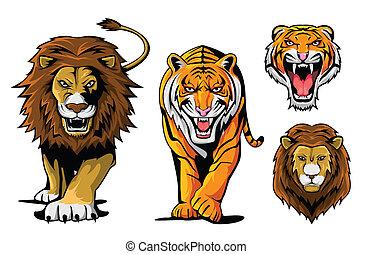 tiger, leeuw