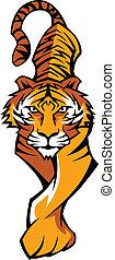 tiger, lichaam, mascotte, vector, prowling