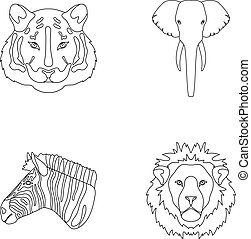 Tiger, lion, elephant, zebra,