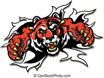 tiger mascot ripping through the background for school,...