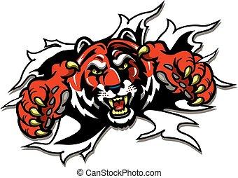 tiger, mascot