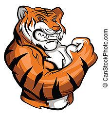tiger, mascote