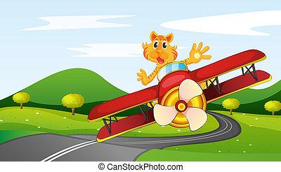tiger, montando, avião