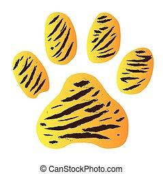 tiger, pegada