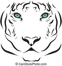 tiger, portræt, hvid, sort