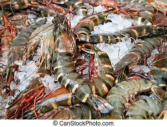 Tiger prawns - Big fresh tiger prawns on the market