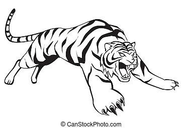tiger, salto