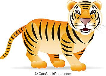 tiger, schattig