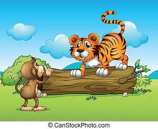 tiger, scimmia