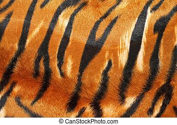 tiger, skinn