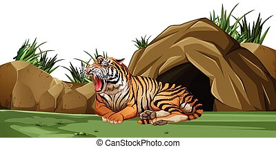 Tiger sleeping in front of the cave