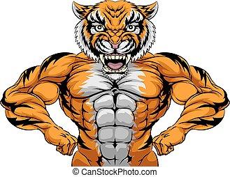 tiger, sporten, sterke, mascotte
