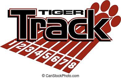 tiger, spur