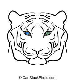 tiger, stor, hvid, sort, portræt