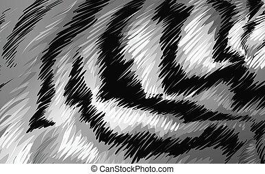 tiger, struttura