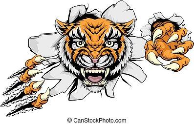 tiger, támad, fogalom