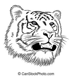 Tiger - Vector tiger represented in the form of a tattoo