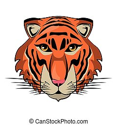 Tiger Wild animal