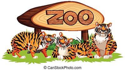 Tiger with baner illustration