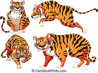set of walking tigers illustration vector clip art search rh canstockphoto com tiger clipart easy tigers clip art black and white