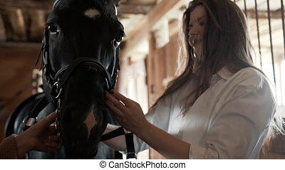 tightens, chemise, girl, cheval, bride, blanc