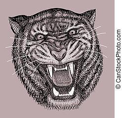 tigre, artistique, dessin