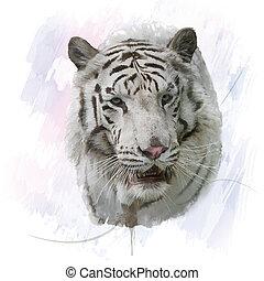 Tigre bianca archivi di illustrazioni e clipart. 11.484 tigre bianca