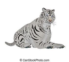 tigre, blanc, délassant