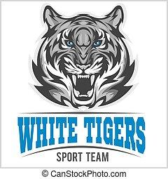 tigre, blanc, tête, vecteur, illustration