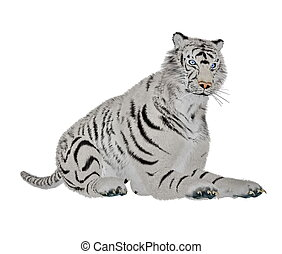 tigre, blanco, relajante