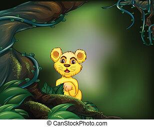 tigre, grand arbre, jeune