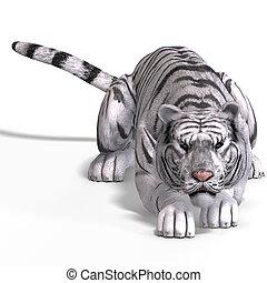 tigre, grande, gato blanco
