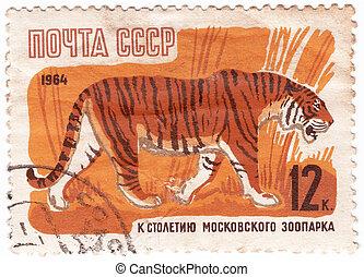 tigre, hacia, 1964, serie, moscú, -, zoo, 100th, anniv.,...