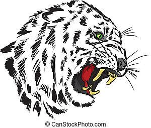 tigre, illustration