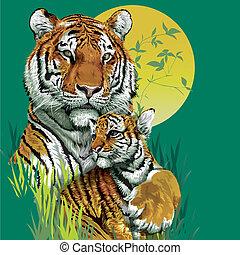 tigre, jungle., vector, familia