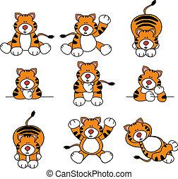 tigre, lindo, conjunto, caricatura