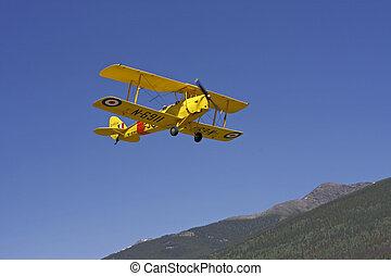 tigre, moth, avion