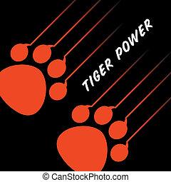 tigre, patte