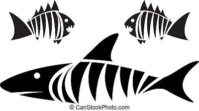 tigre, Pirañas, tiburón