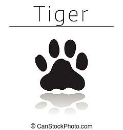 tigre, piste, animal