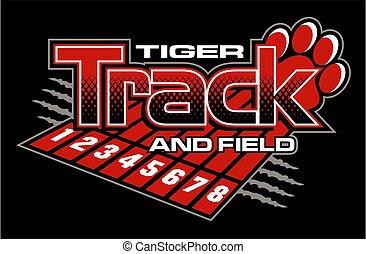 tigre, piste, champ